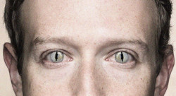 The 2020 Election Wasn't Stolen, It Was Bought By Mark Zuckerberg
